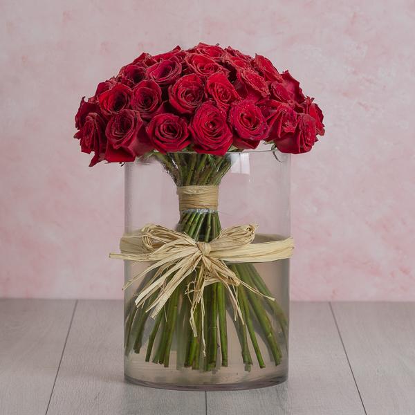 Fatima's Red Roses