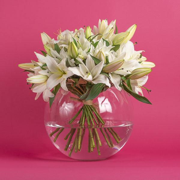Sarah's Lilies