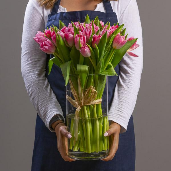 Dana's Pink Tulips