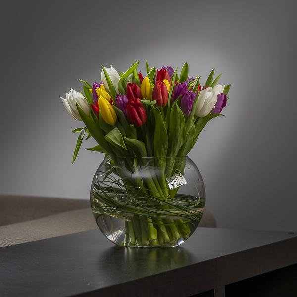 Dana's Rainbow Tulips