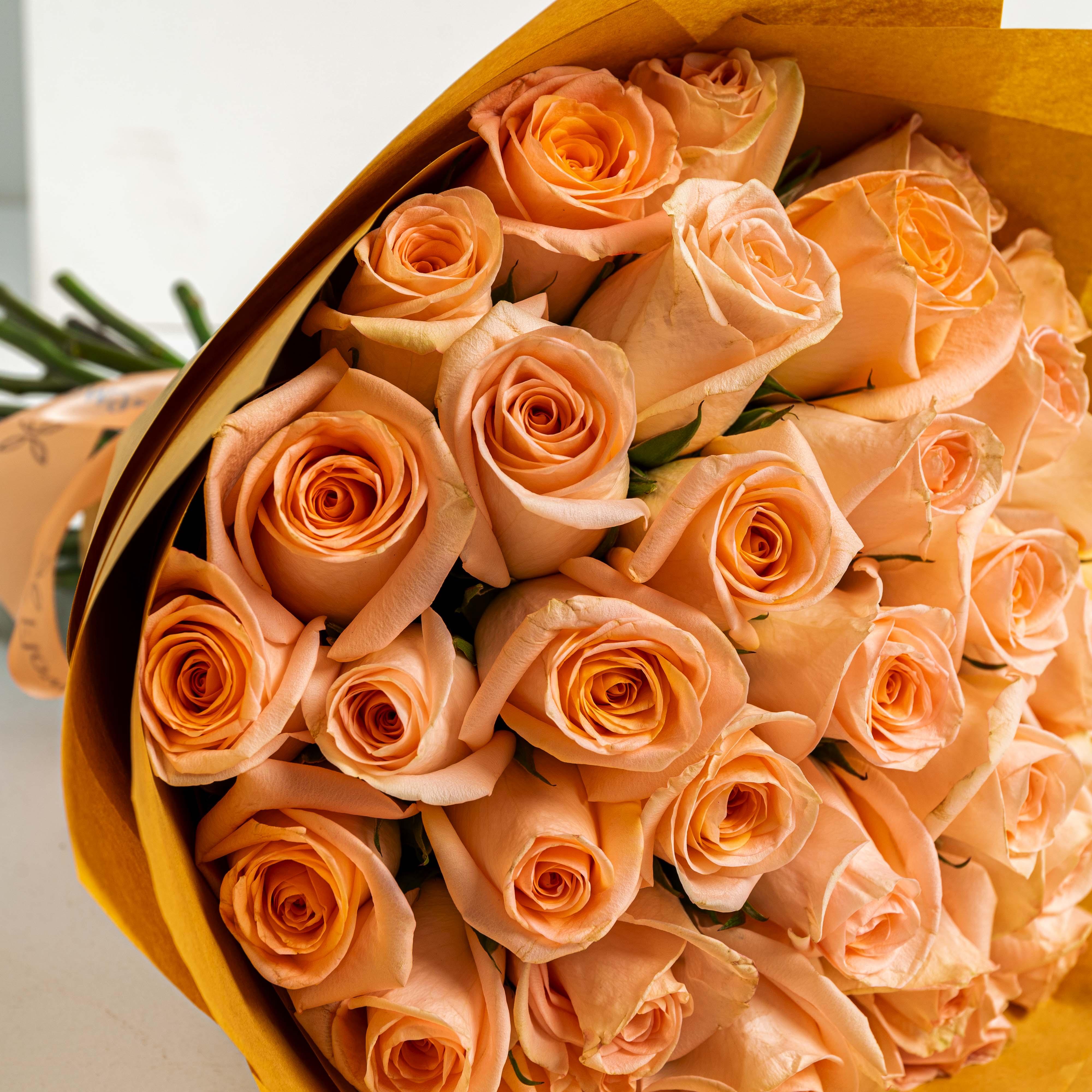 35 Peach Roses