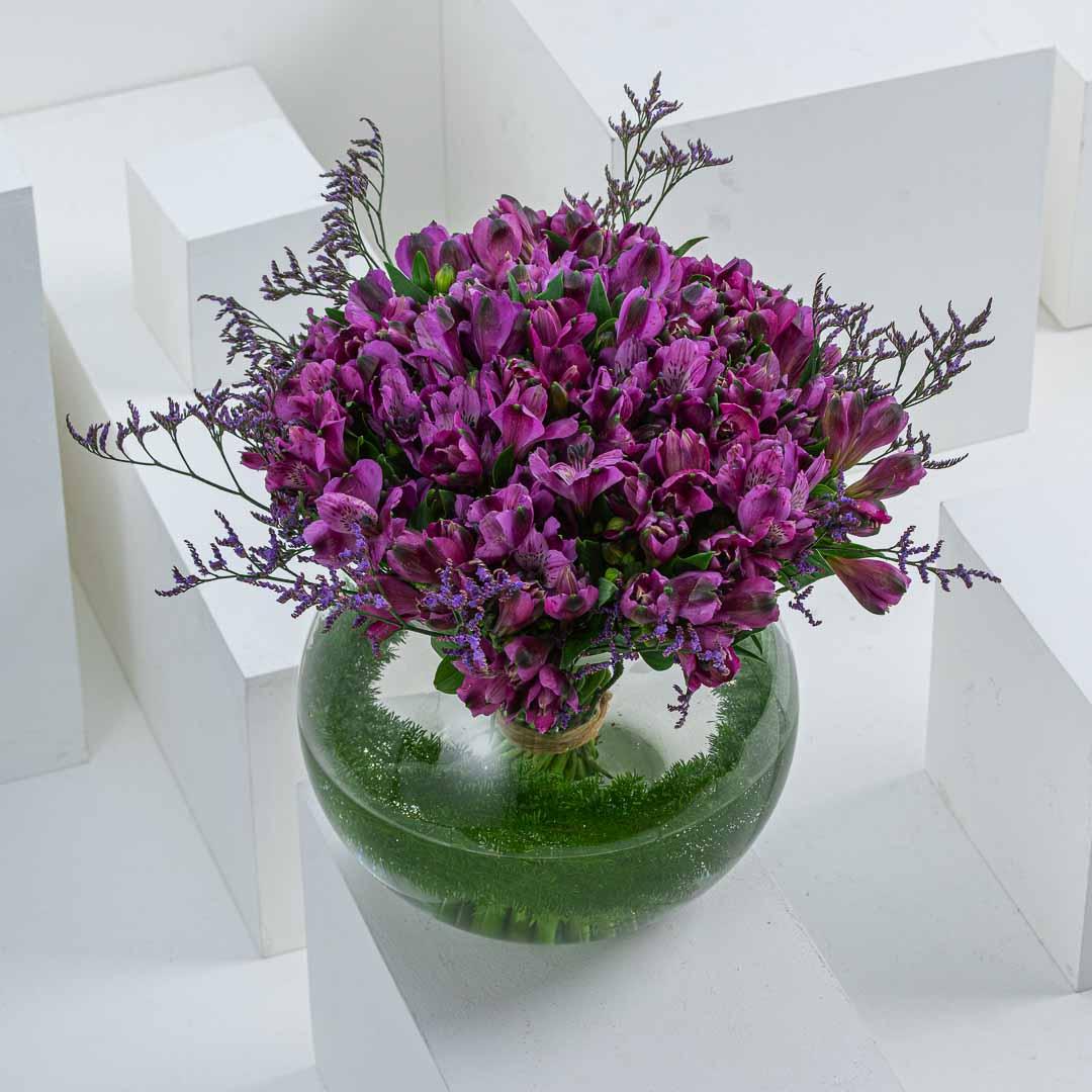 Purple Alstroemeria II