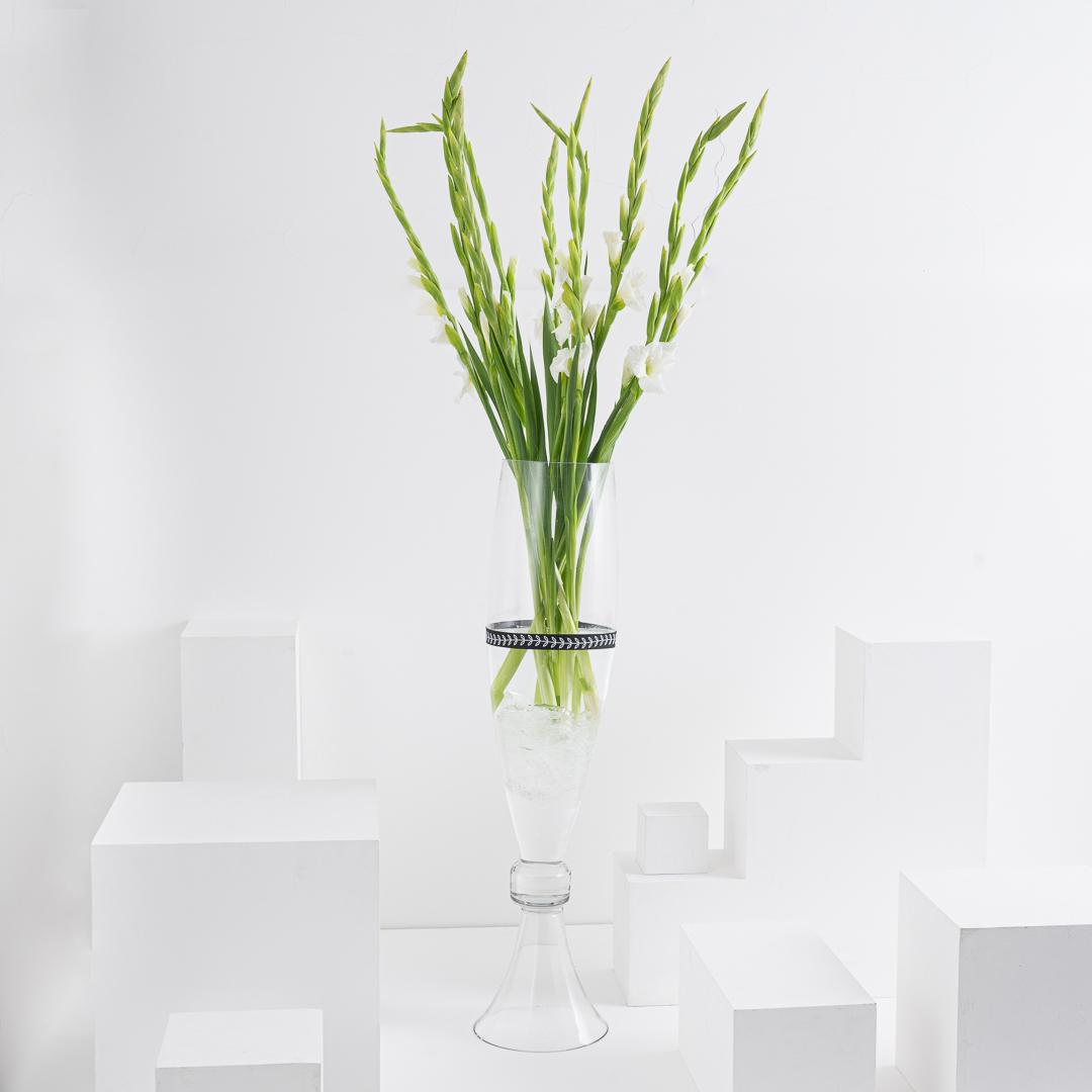 White Gladiolus I