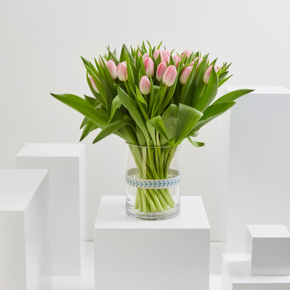 35 Pink Tulip Cylinder