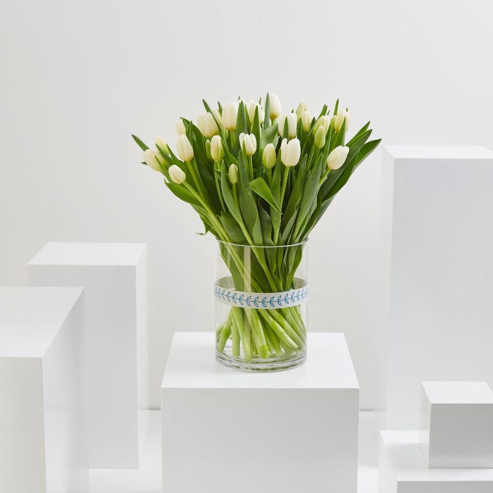 35 White Tulip Cylinder
