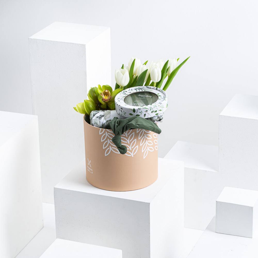 Oleana Evergreen Set
