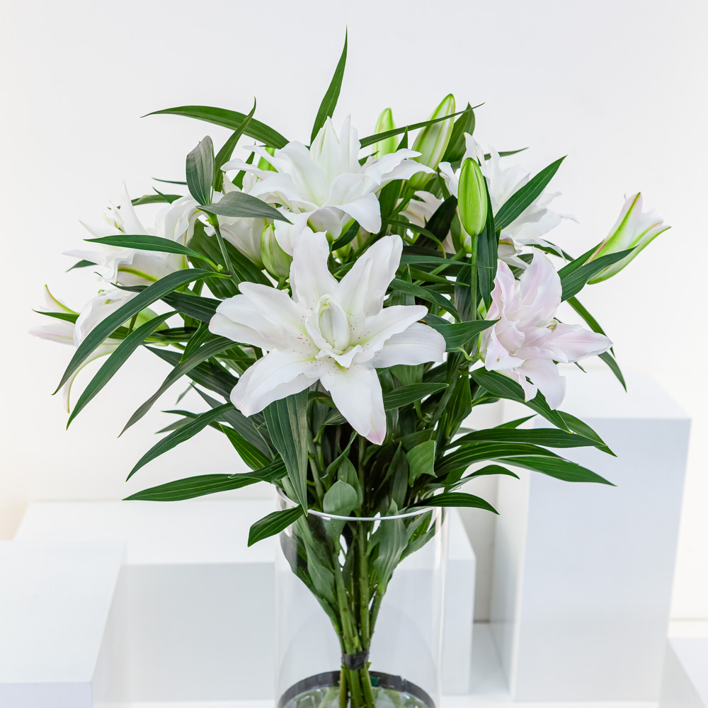 White Lily Cylinder