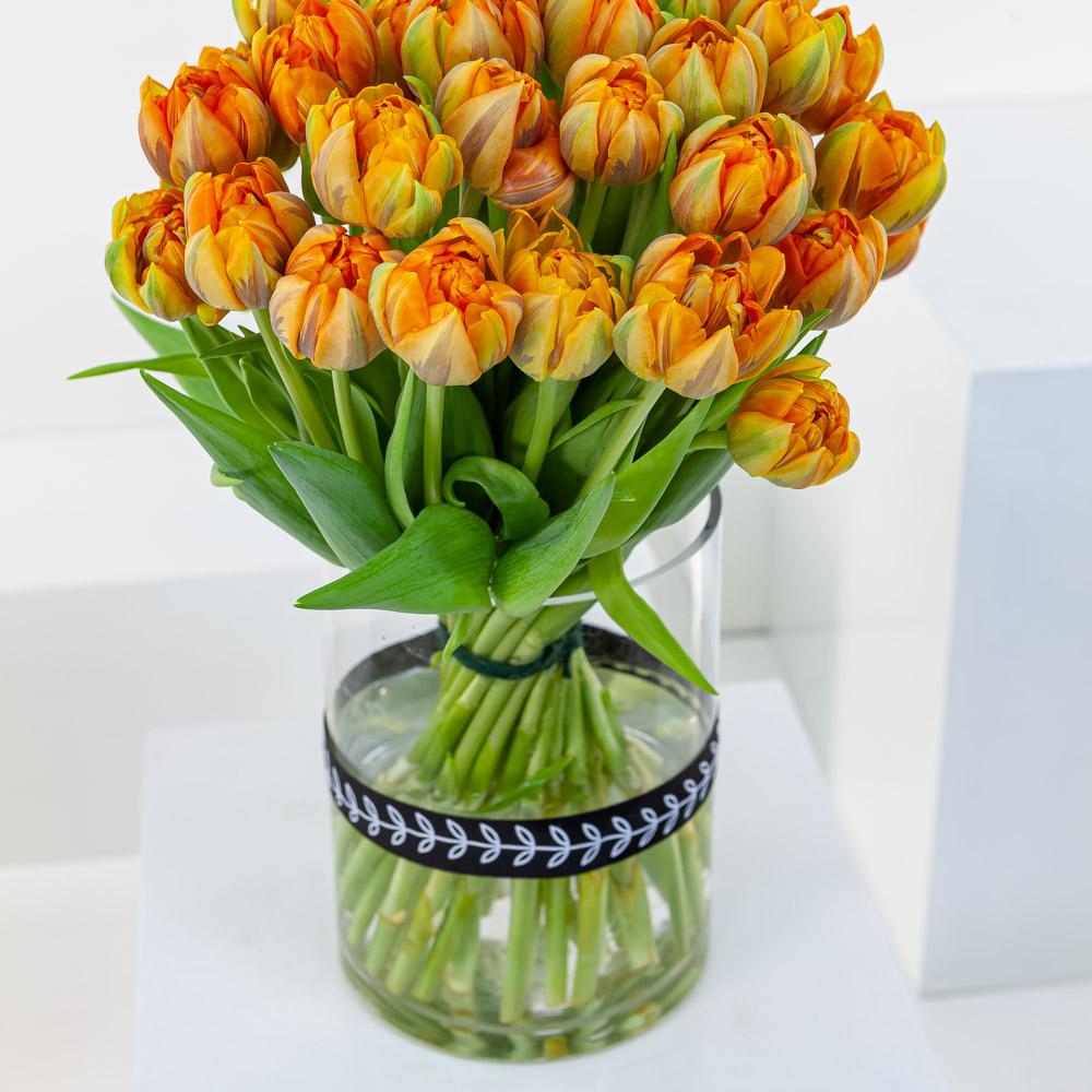 Double Orange Tulip Cylinder