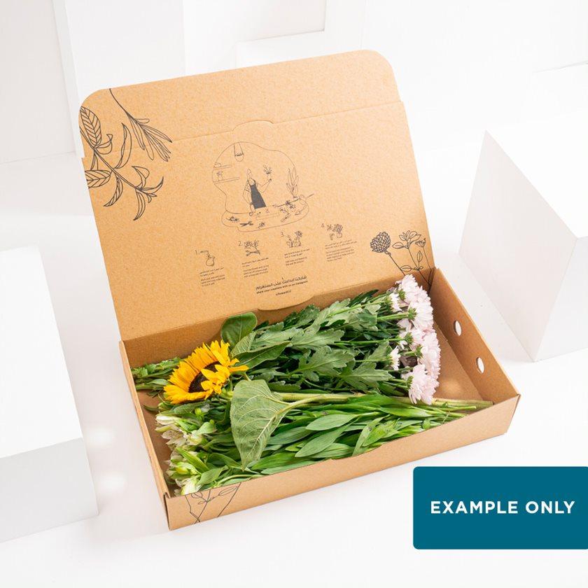 Weekly DIY Box