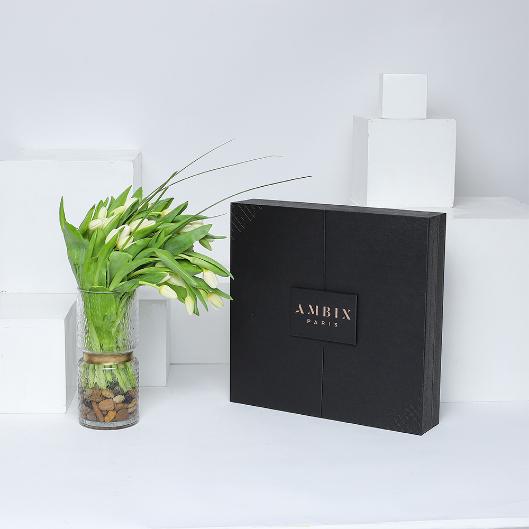 AMBIX LUXURY BOX